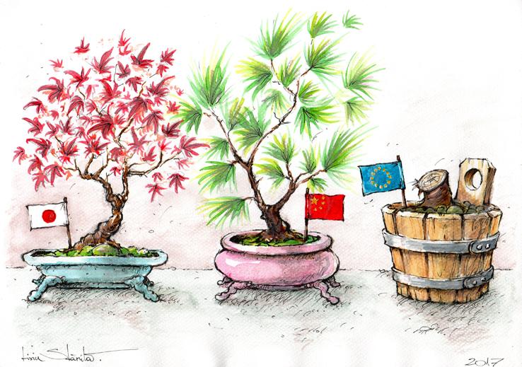 Traditional bonsai cut792